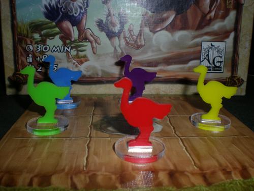 Avestruces Banjooli